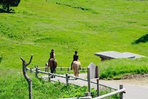 Reiten in Südtirol