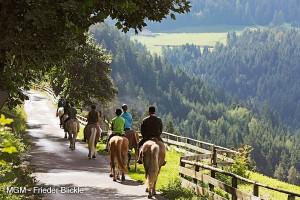 Reiturlaub in Südtirol