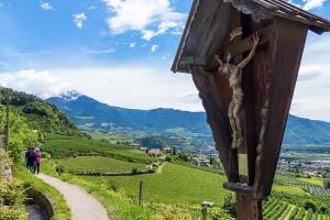 Wandern über Südtirols Waalwege