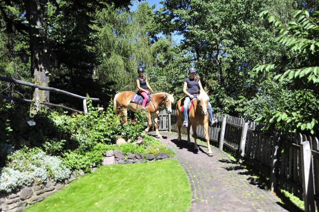 Südtiroler Reiterferien